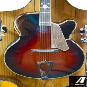 benedetto_archtop_acoustic_electric_guitar